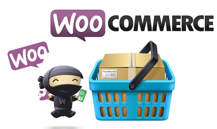 100+ WooCommerce Plugins Free Download [Latest Updated]